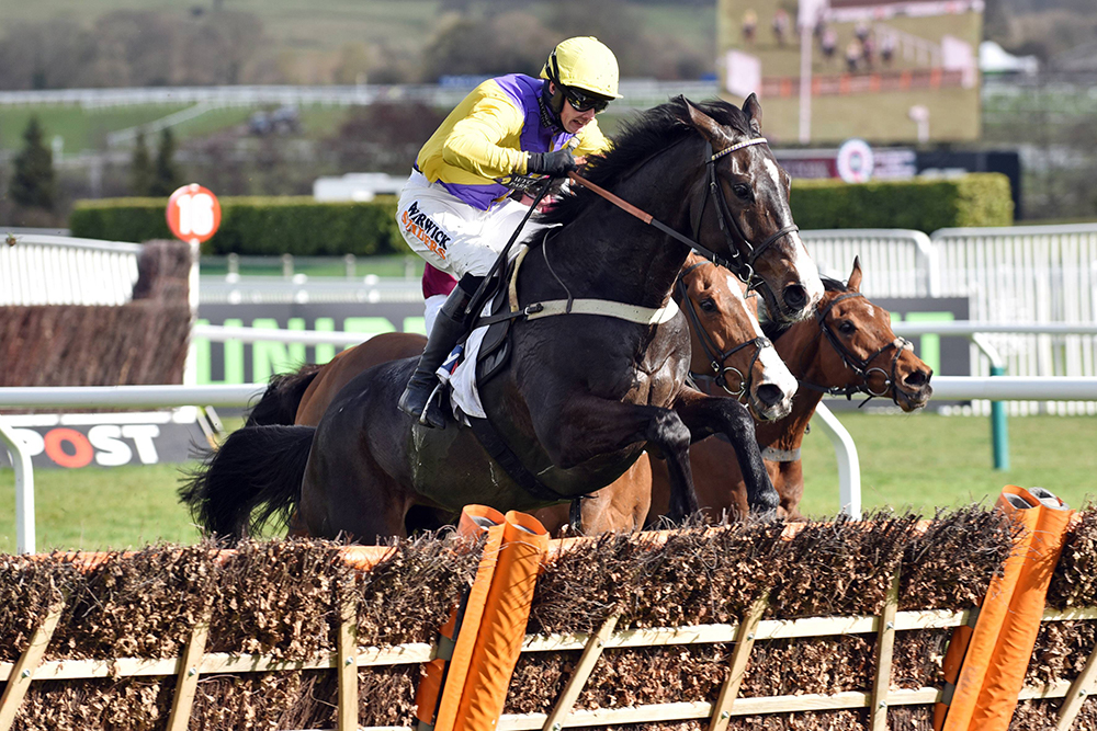 Horse Racing: Cheltenham and Doncaster, Preview & Tips – Saturday