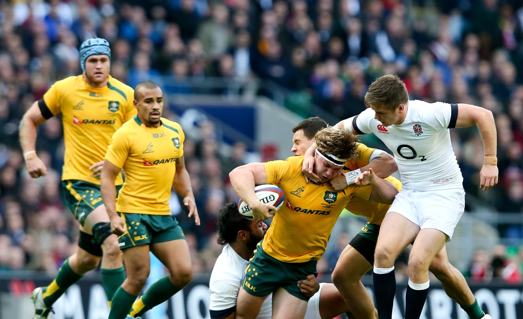 Autumn International Rugby Acca Betting Preview, Tips and Enhanced Odds