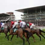 Cheltenham Trials Day: Big guns head to Prestbury Park for festival warm-up