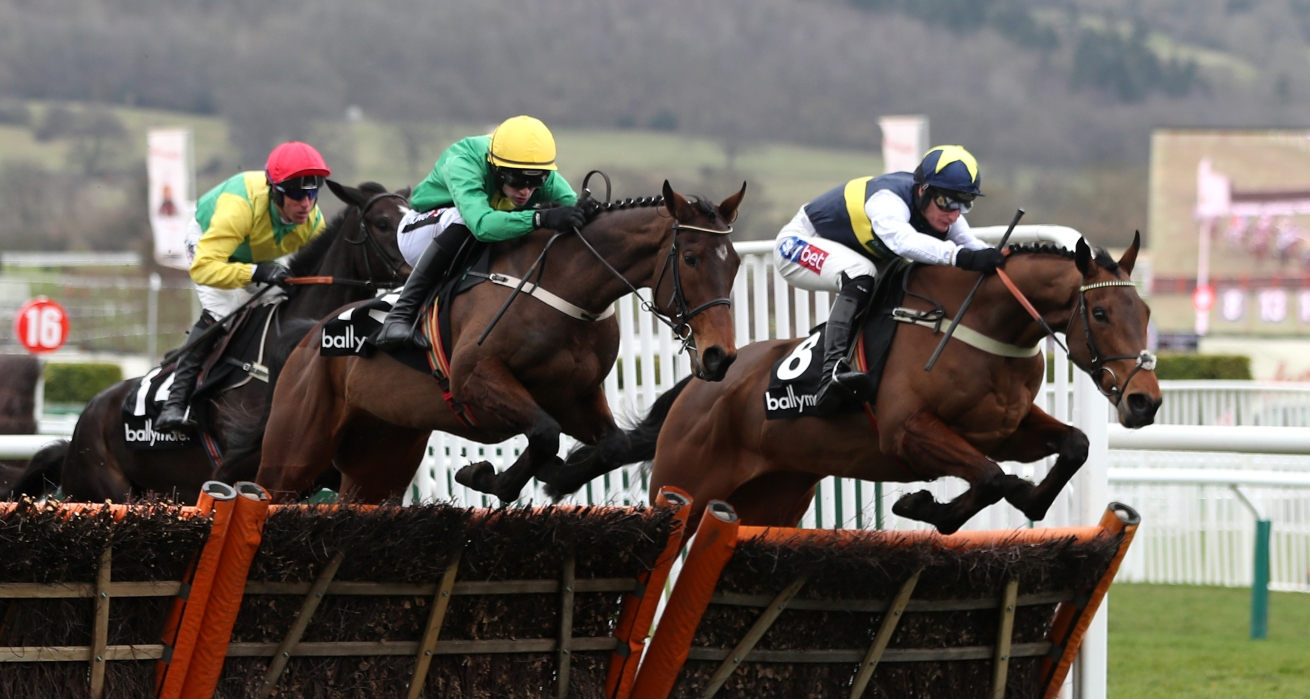 Cheltenham Day Two Betting Tips, Preview And Race Schedule – Ladies Day
