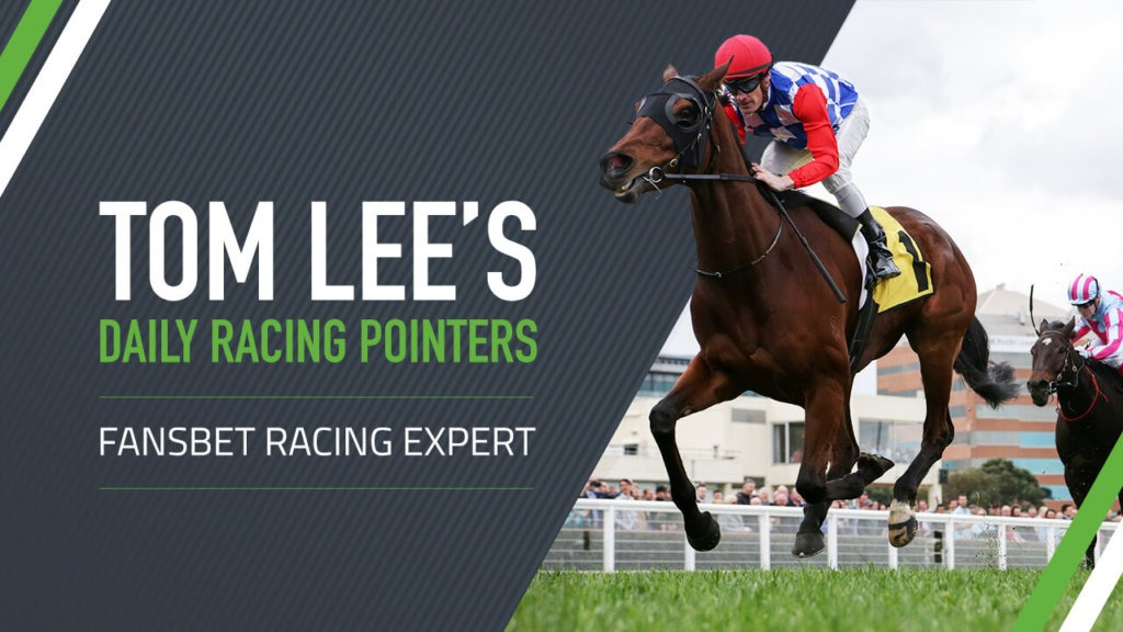 Tom Lee Horse Racing