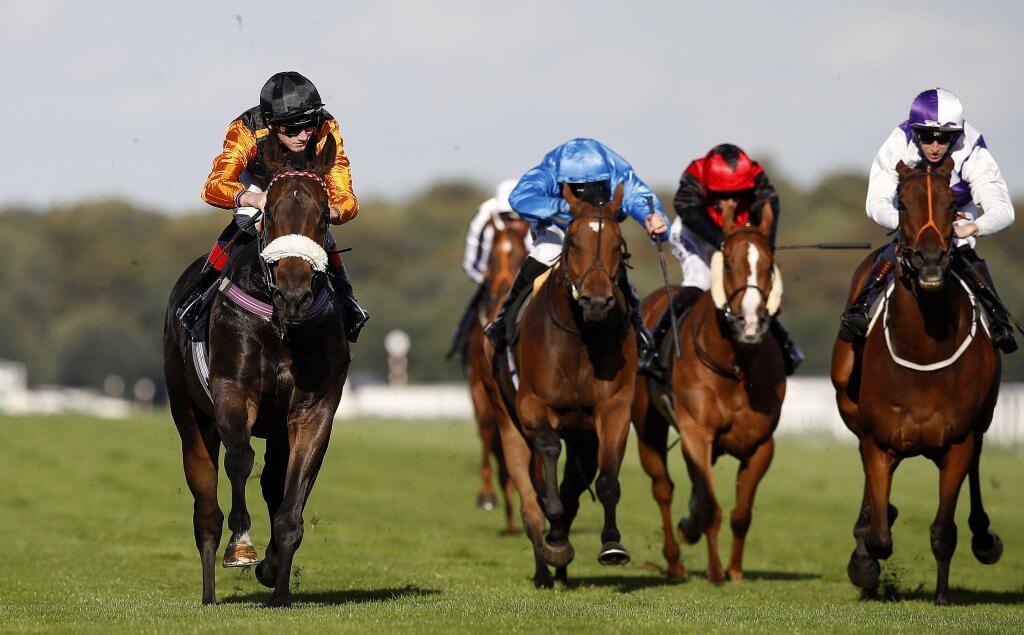 Horse Racing Main