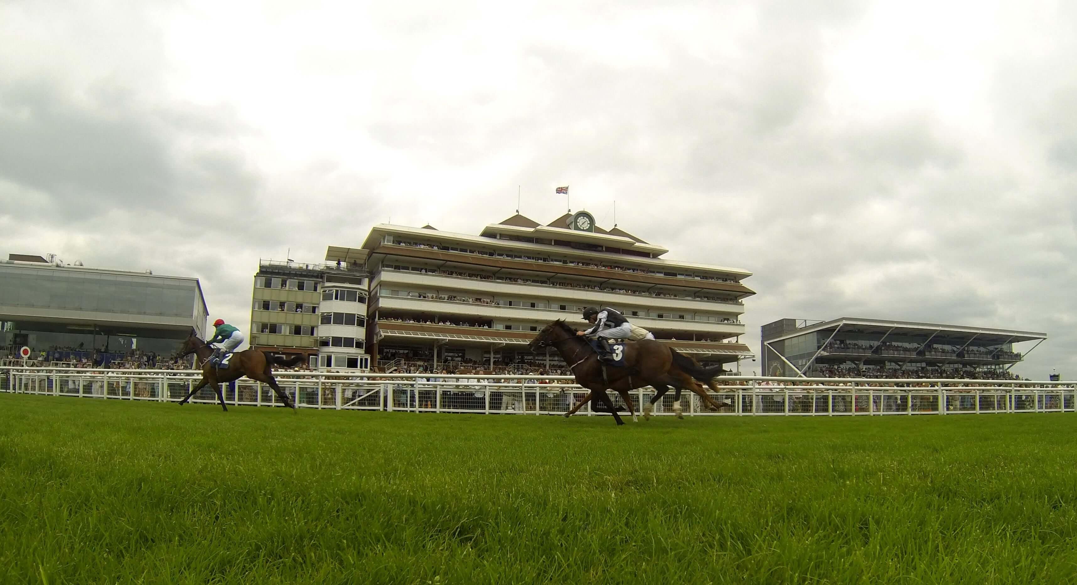 Horse Racing Newbury
