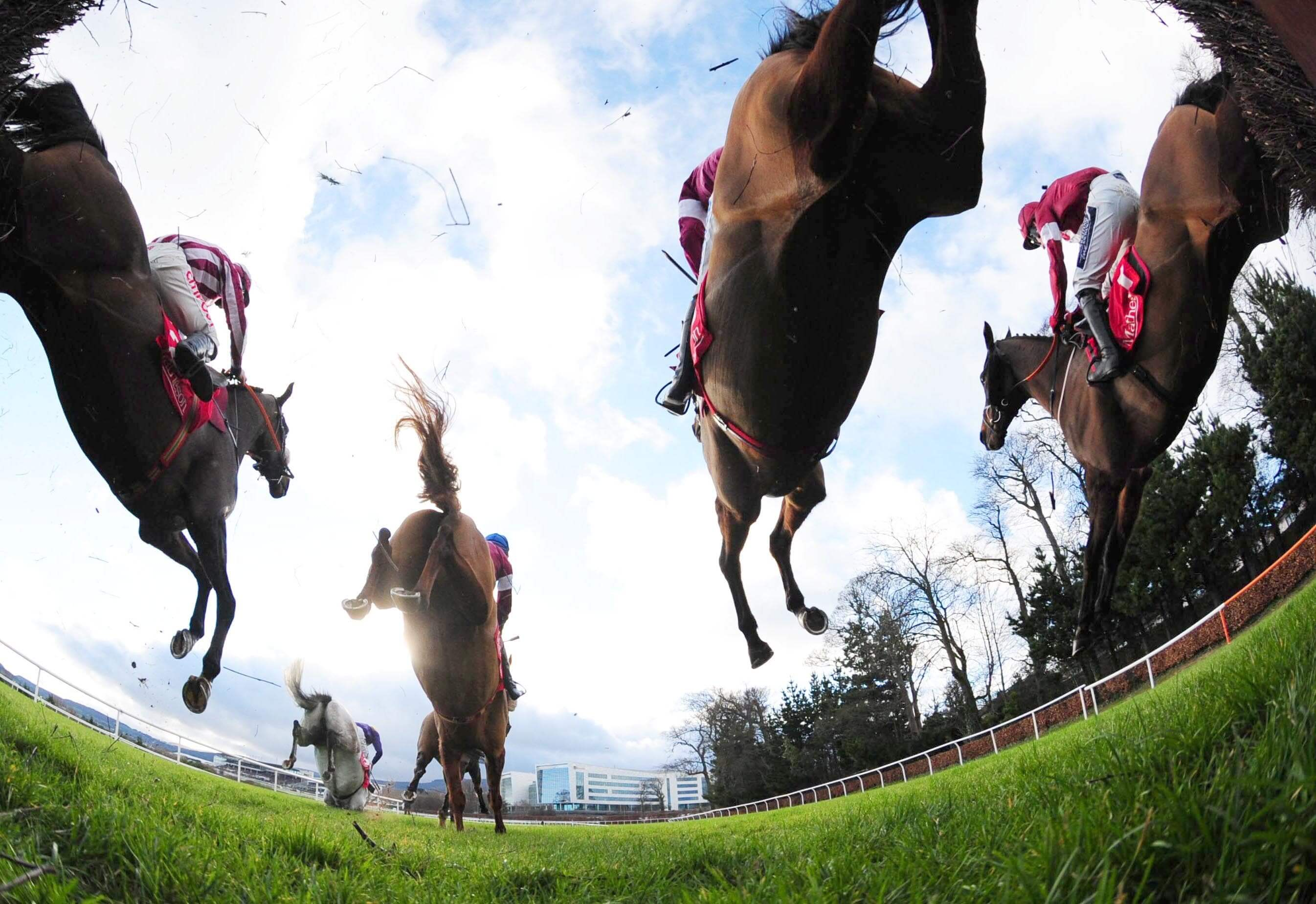 Horse Racing: Cheltenham, Punchestown, Fontwell – Preview & Tips – Sunday