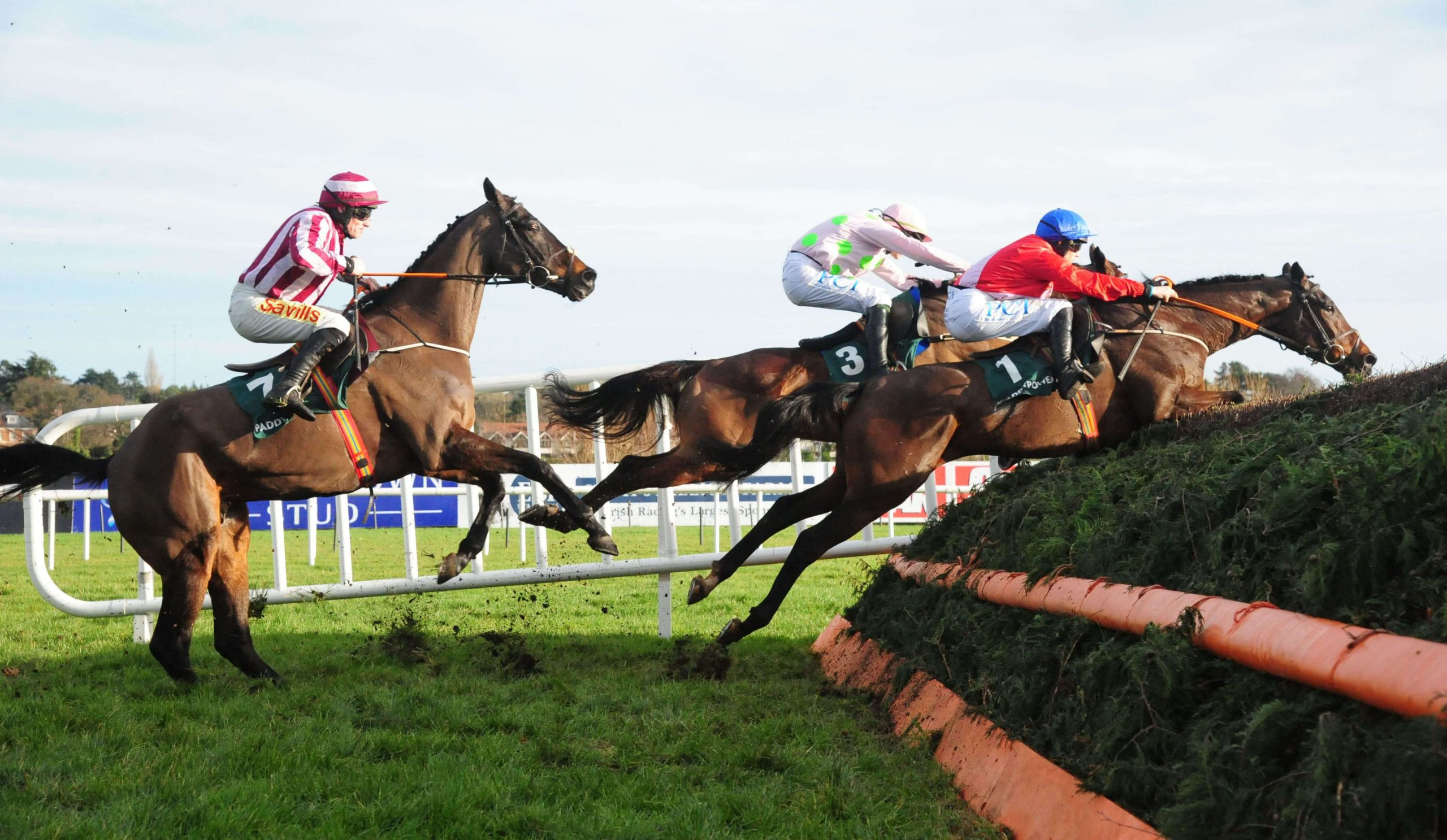 Horse Racing: Newbury and Newcastle, Preview & Tips – Saturday