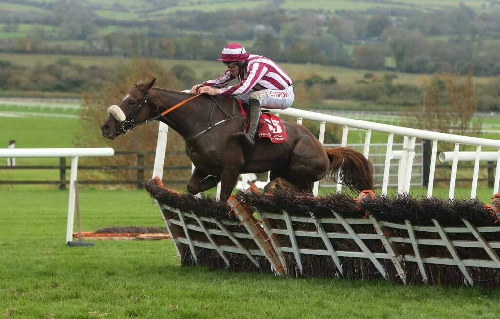 Ben Dundee Horse