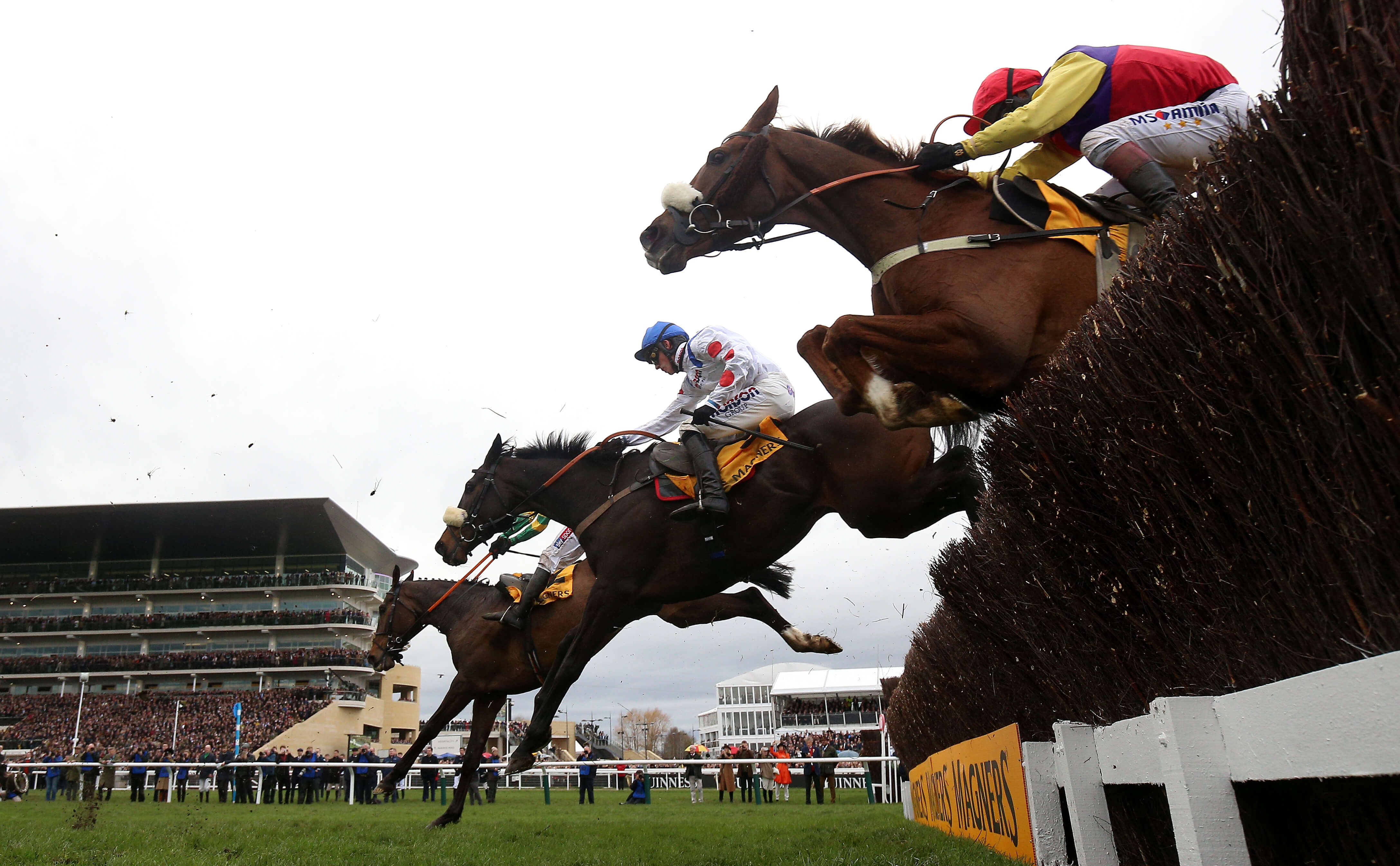 Horse Racing: Cheltenham and Lingfield, Preview & Tips – Saturday
