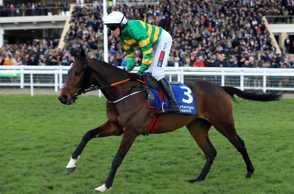 Sire Du Berlais Horse