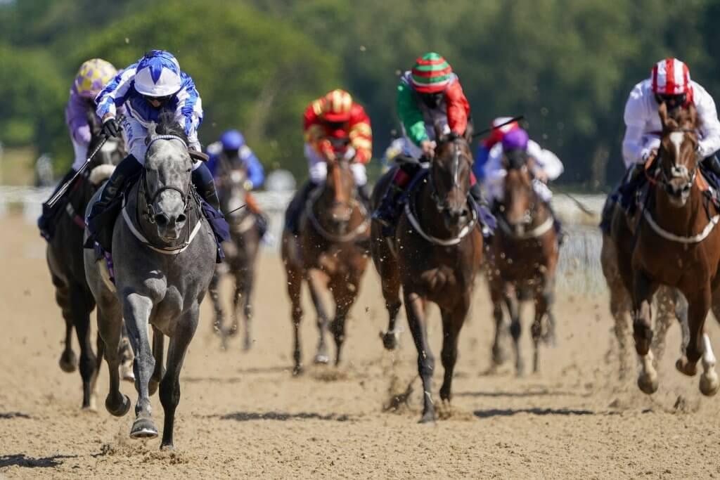 Newcastle Races UK Horse Racing