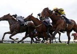 Horse Racing: Newmarket & York Preview, Tips – Friday