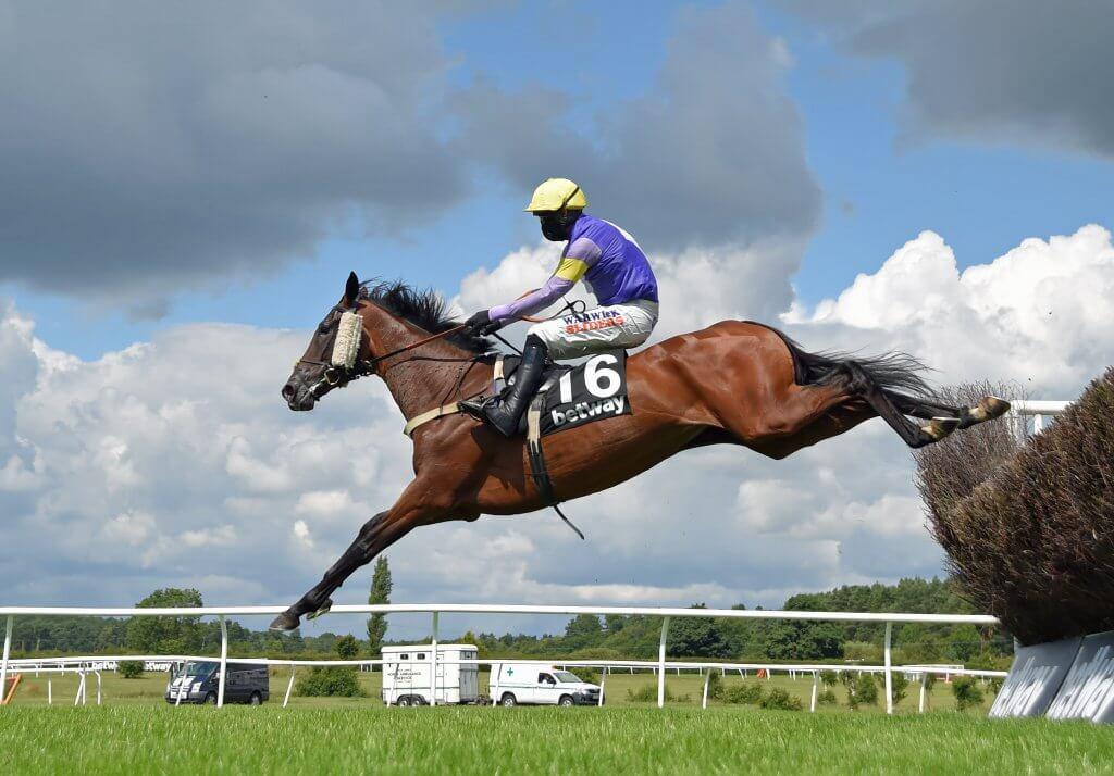 Horse Really Super